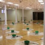 TreeFest '11 Setup